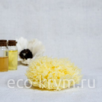 Морская Губка органическая для лица (6,0 - 7,5 см.)